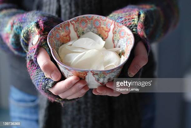 white rose petals in bowl - 指なし手袋 ストックフォトと画像