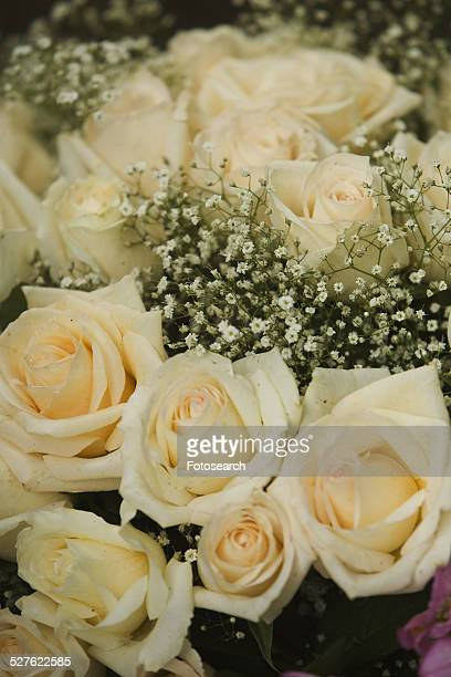 White roses and babys breath