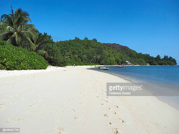 White Sand Beach at Cerf Island, Seychelles, Indian Ocean