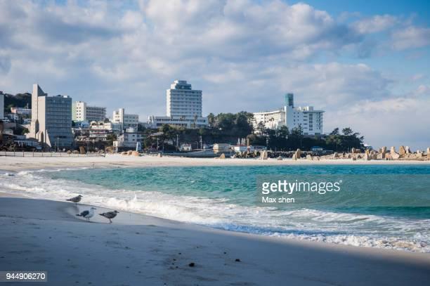 white sand beach at the wakayama, japan - präfektur wakayama stock-fotos und bilder