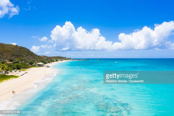 white sand beach from above, caribbean, antilles - barbados stock pictures, royalty-free photos & images