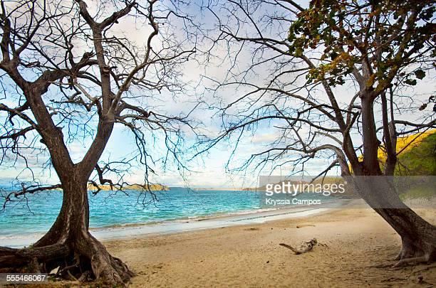 White sand beach in Costa Rica