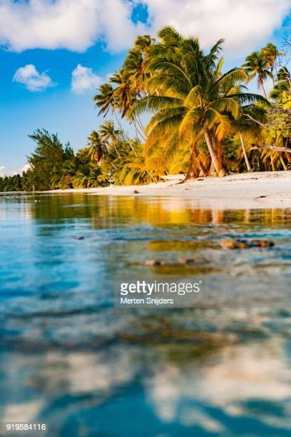 White sand beach with palms from lagoon with cloud reflections