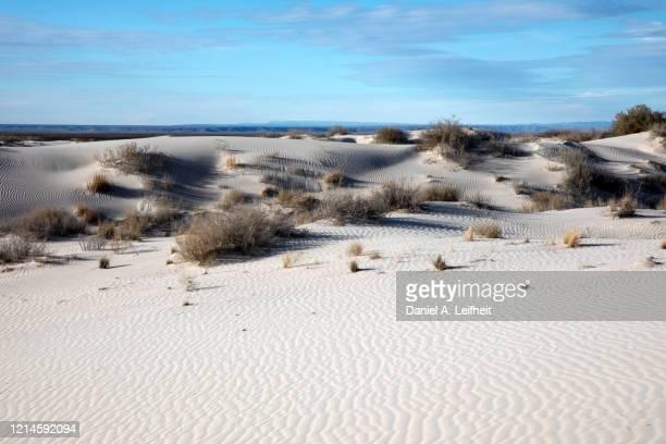 white sand dunes in texas - chihuahua desert stock pictures, royalty-free photos & images