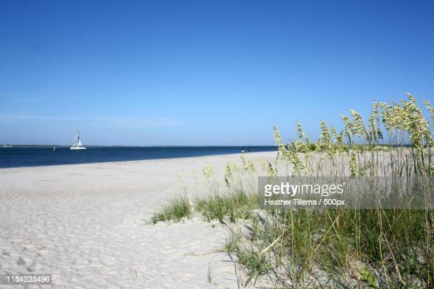 white sand - atlantic beach north carolina stock pictures, royalty-free photos & images