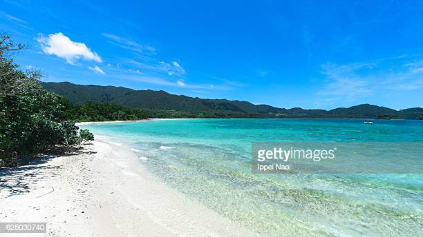 White sand tropical beach of Iriomote-Ishigaki National Park, Japan