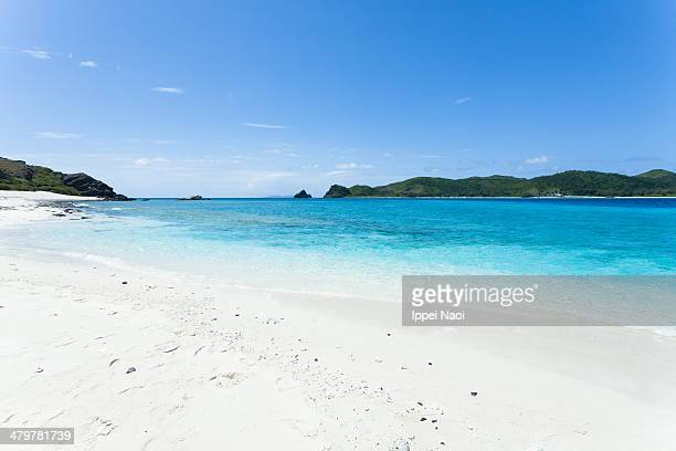 White sand tropical beach with clear blue water
