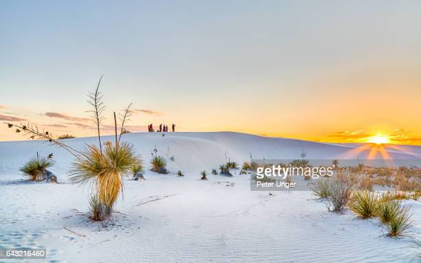 white sands national monument,new mexico,usa - new mexico stock pictures, royalty-free photos & images