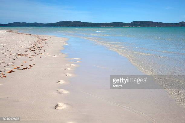 White sandy shoreline of Whitehaven Beach on Whitsunday Island in the Coral Sea Queensland Australia