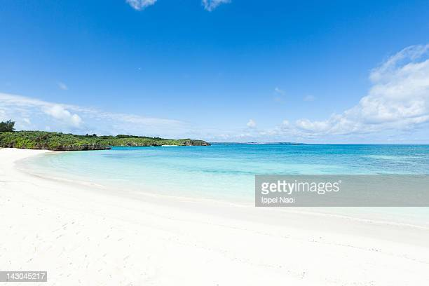 White sandy tropical beach and clear blue water