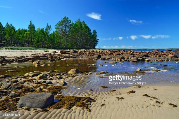 white sea shore during low tide karelia, russia - sergei stock pictures, royalty-free photos & images