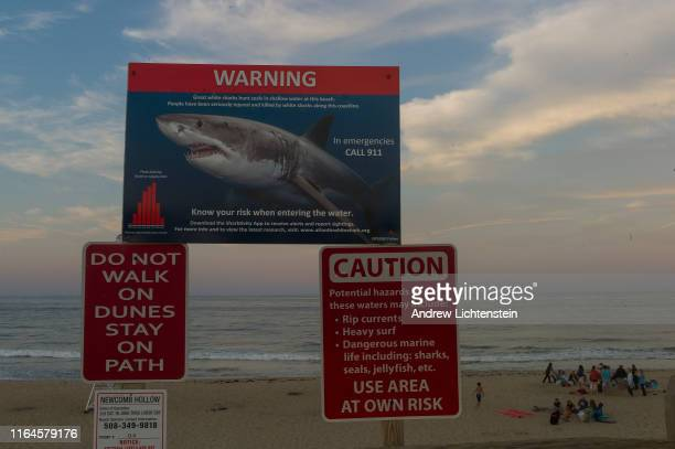 White shark warning signs greet visitors to Cape Cod's beaches on July 25 2019 in Wellfleet Massachusetts The culture of Cape Cod is dramatically...