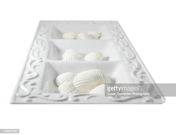white shells in white tray - chatham new york state stock pictures, royalty-free photos & images