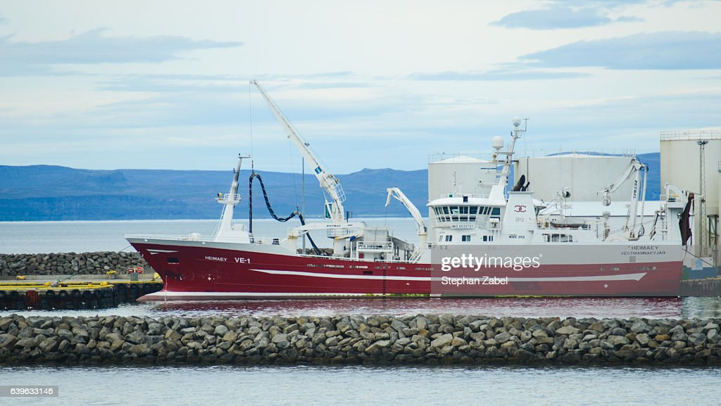 white ship in iceland harbour : Stock Photo