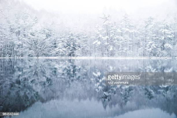 white sound - 雪 ストックフォトと画像