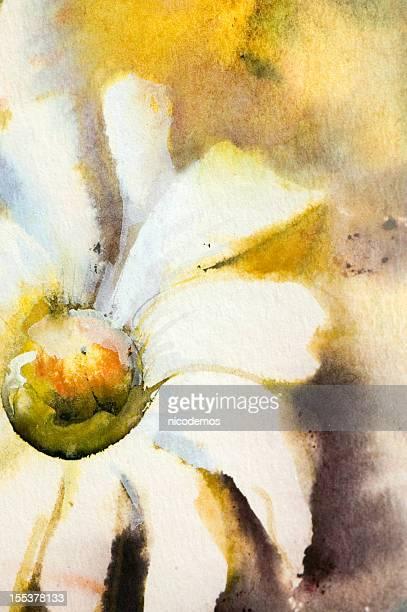 Weiße Frühlings Blumen.