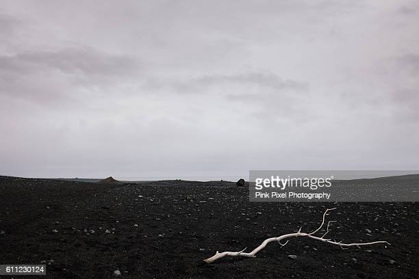 White stick on black sand