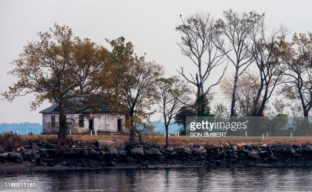 White stones mark burial sites at the Potter's field on Hart Island, October 25, 2019 in New York. - Elaine Joseph's baby daughter is one of around a...
