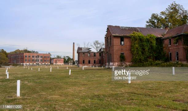 White stones mark burial sites at the Potter's field on Hart Island October 25 2019 in New York Elaine Joseph's baby daughter is one of around a...