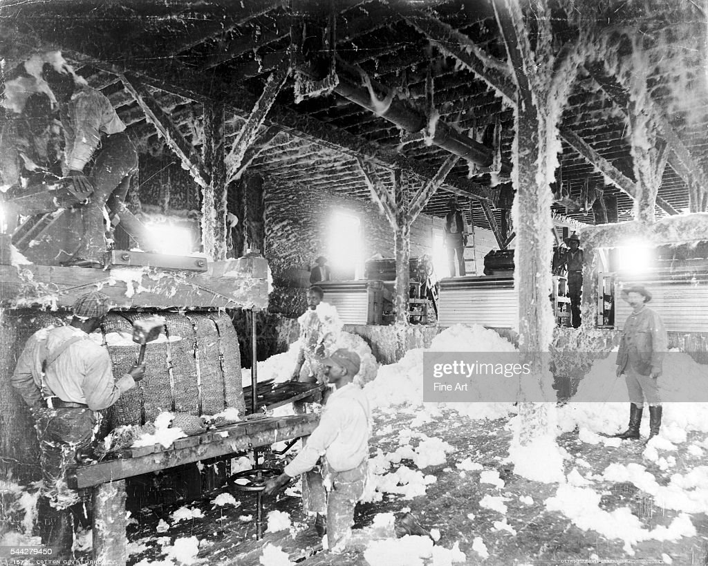 Cotton Gin Workers : News Photo