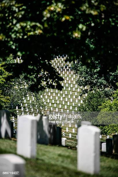 White Tombstones In Arlington National Cemetery