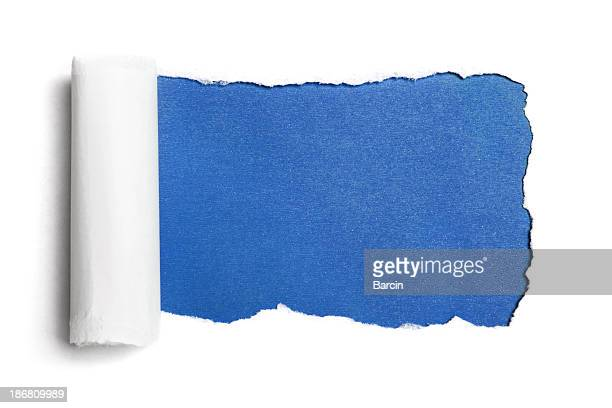 white torn paper - curled up stock pictures, royalty-free photos & images