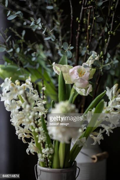 white tulips and hyacinths in a jug - weiß stock pictures, royalty-free photos & images