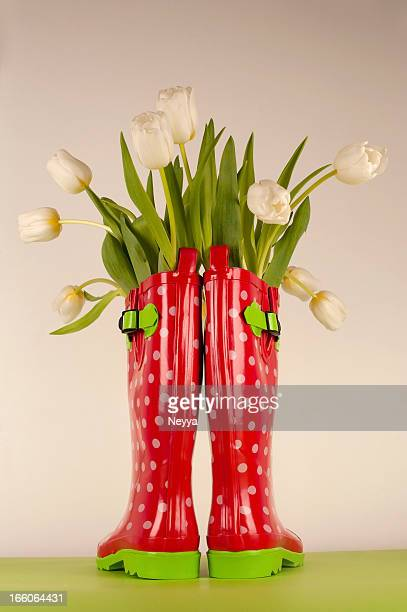 Weiße Tulpen in Gummi Stiefel