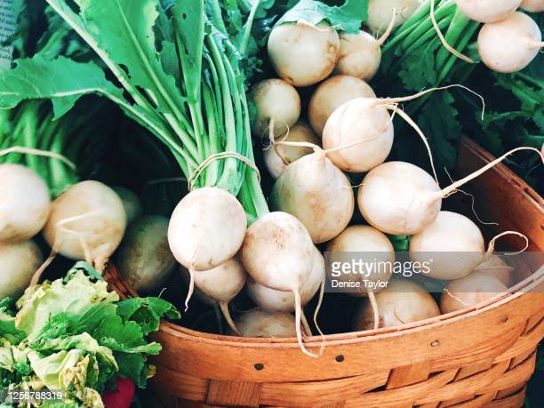 white turnips - turnip stock pictures, royalty-free photos & images