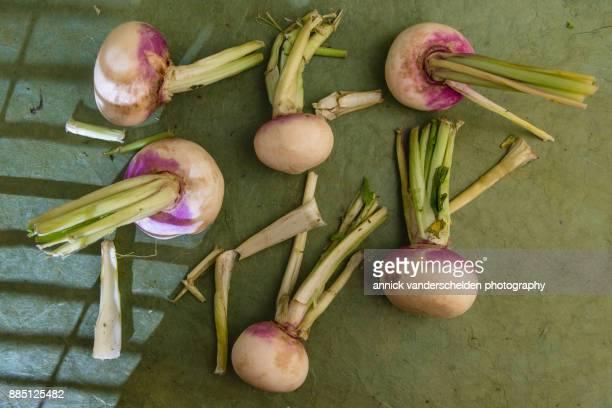 White turnips.