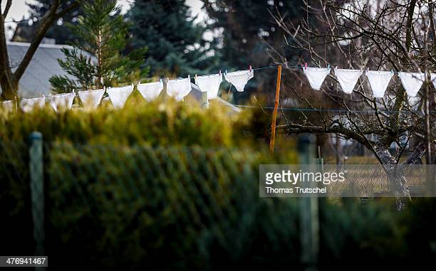 White underwear drying on a clothesline in a garden on March 01 2014 in Ilmenau Germany
