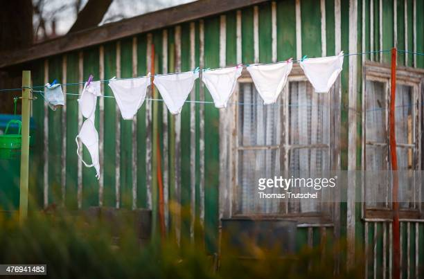 White underwear drying on a clothesline in a little garden on March 01 2014 in Ilmenau Germany