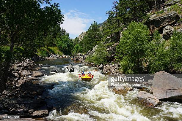white water rafting, colorado - fort collins stock pictures, royalty-free photos & images