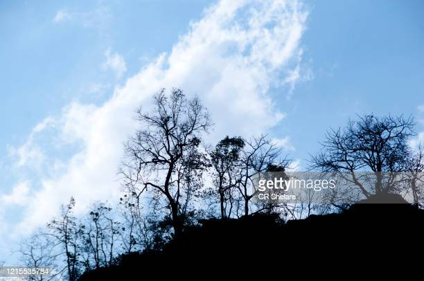 white whispy clouds and blue sky, clouds on blue sky, abstract cloudscape background - inclinando se - fotografias e filmes do acervo