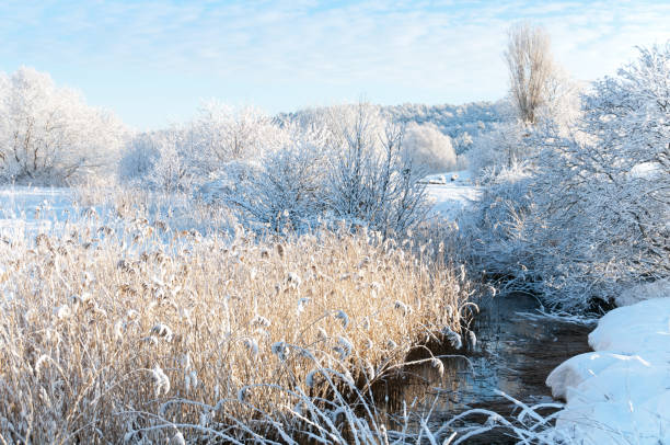 White Winter Landscape Wall Art