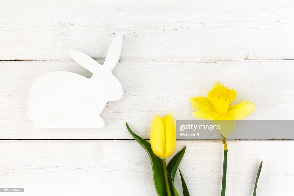 White wooden Easter bunny and yellow daffodil and tulip : ストックフォト