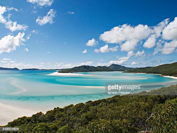 Whitehaven beach in the Whitesundays