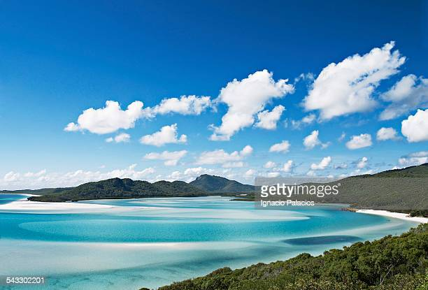 whitehaven beach in the whitesundays - whitehaven beach stock photos and pictures