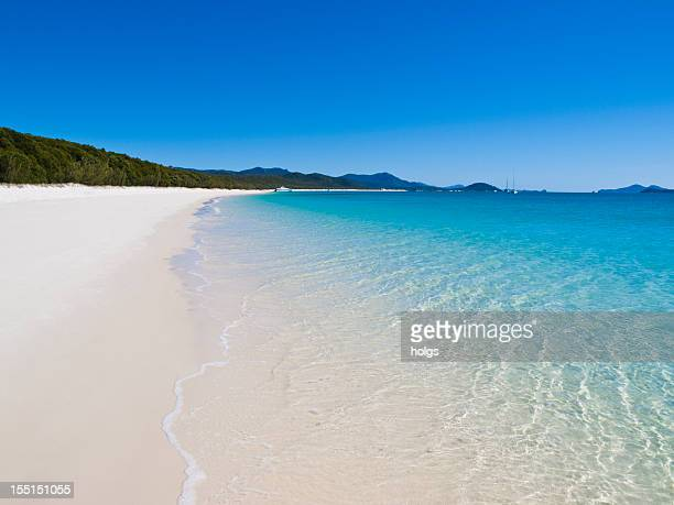 strand whitehaven beach auf whitsunday island, australien - whitehaven beach stock-fotos und bilder