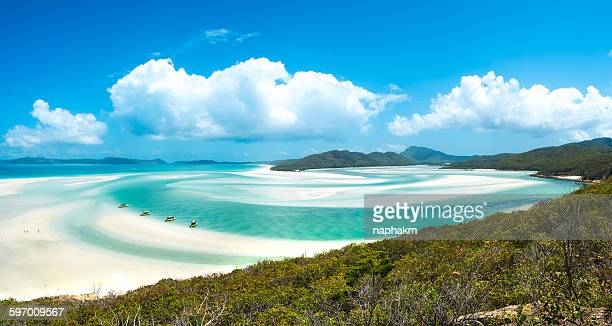 whiteheaven beach - whitehaven beach stock-fotos und bilder