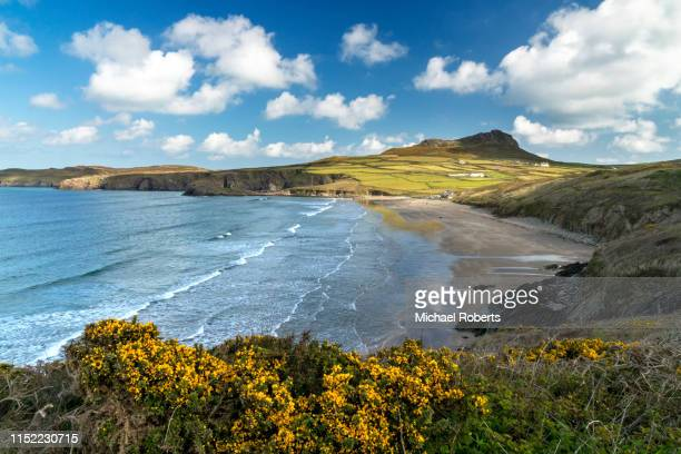 whitesands beach and carn llidi on the pembrokeshire coast path by st davids - st davids day stock pictures, royalty-free photos & images