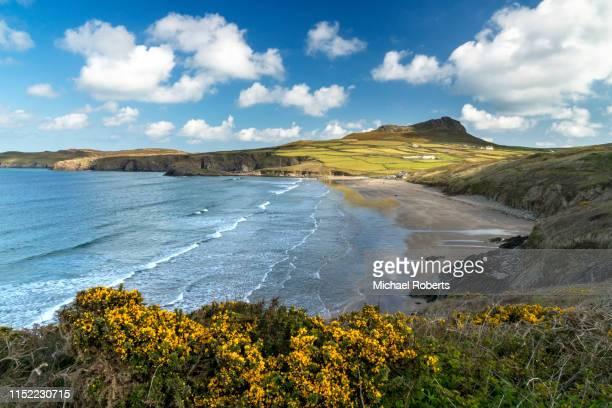 whitesands beach and carn llidi on the pembrokeshire coast path by st davids - niet gecultiveerd stockfoto's en -beelden