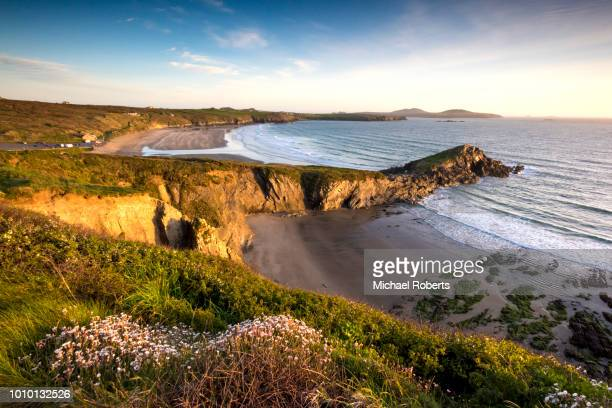 whitesands beach on the pembrokeshire coast path near st davids, wales - coastline stock photos and pictures