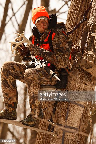 Whitetail Deer Hunter In Treestand