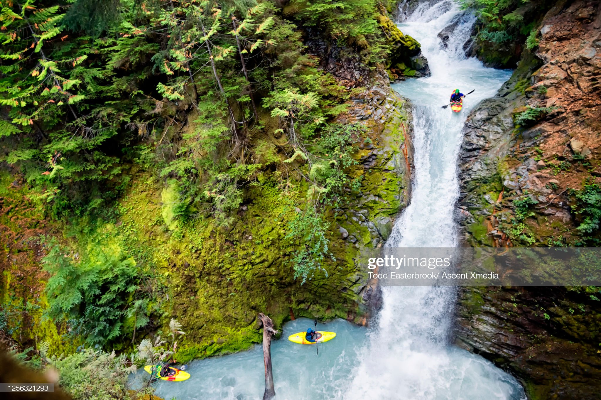 Whitewater paddlers descend vertical waterfall, in kayak : Stock Photo