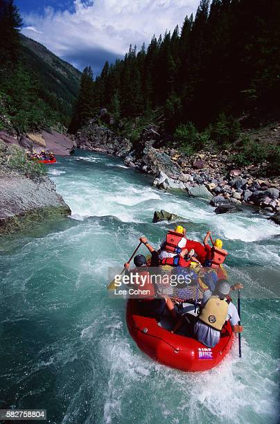 Whitewater Rafting on the Flathead River