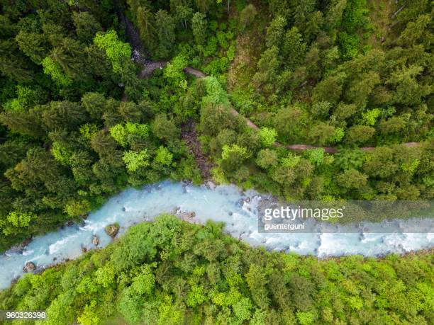 whitewater river in a green spring forest (steyr, upper austria) - flowing stock pictures, royalty-free photos & images