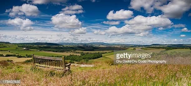 whittingham vale - alnwick stock pictures, royalty-free photos & images