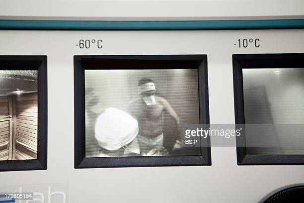 Whole Body Cryotherapy National institute of sport France Stimulates temperature receptors in skin to communicate with brain inhibits inflammation...