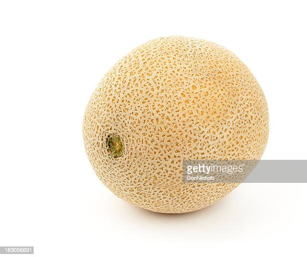 Whole Cantaloupe Isolated